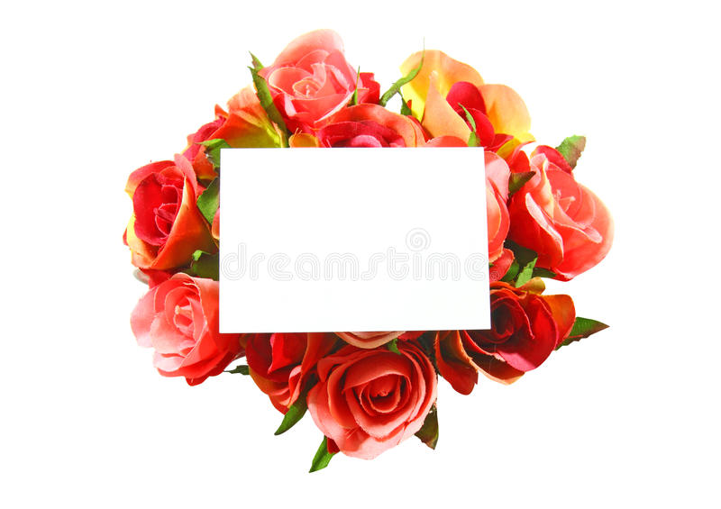 Blank Card And Rose Isolated Stock Photography