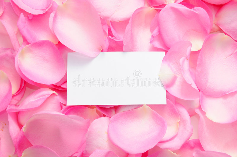 Download Blank Card With Rose Petals Stock Photo - Image: 5709022