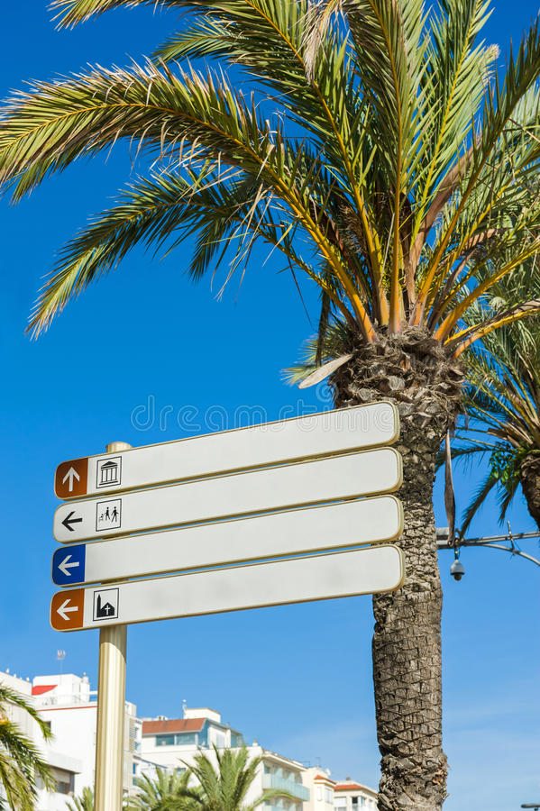 Blank directional signs. Under a palm tree stock image