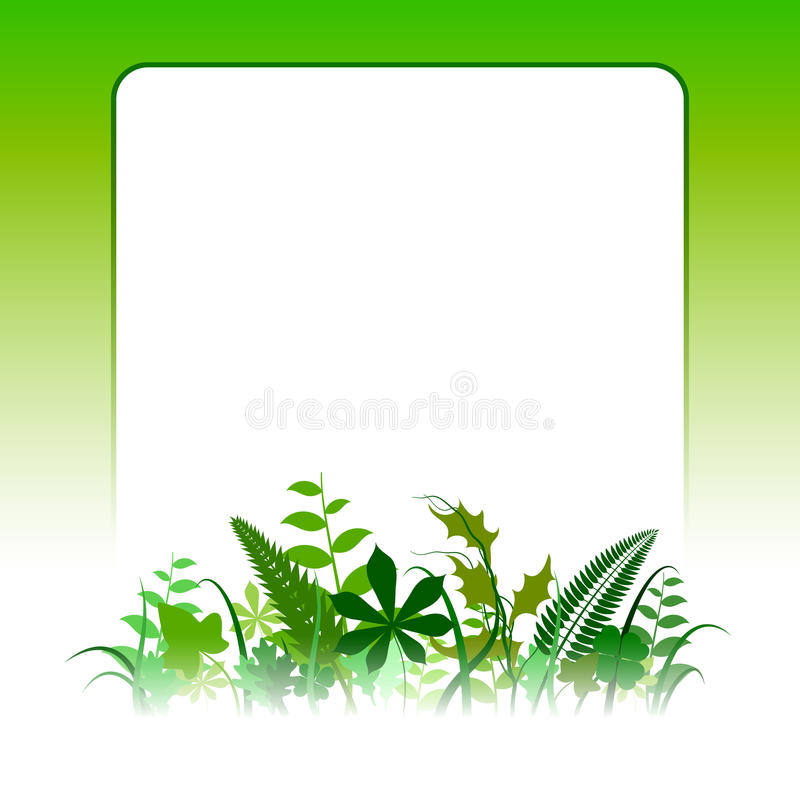 Blank Eco Card vector illustration