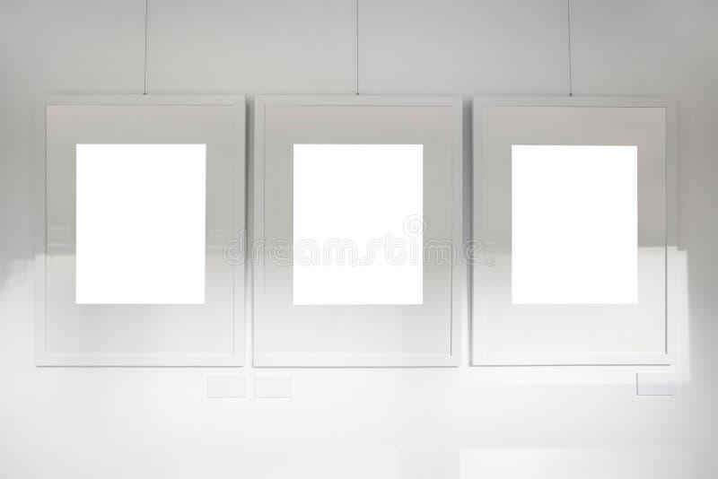Blank frames on art gallery white wall
