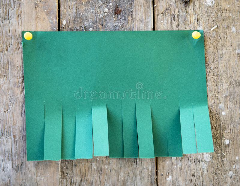Blank green paper. With tear off tabs royalty free stock image