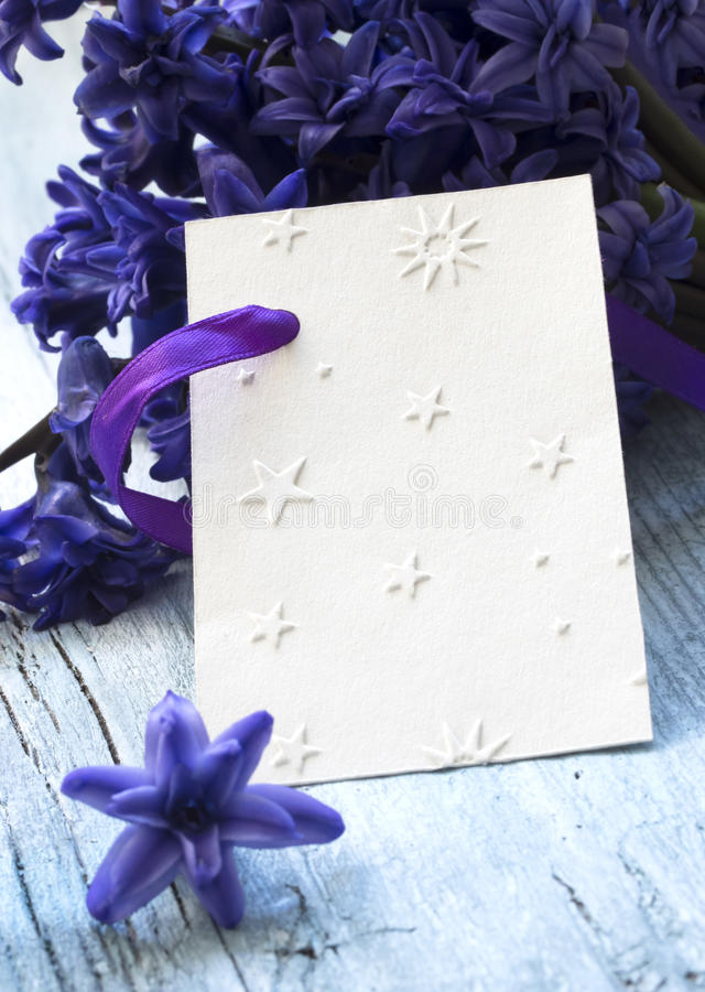 Blank greeting card stock images