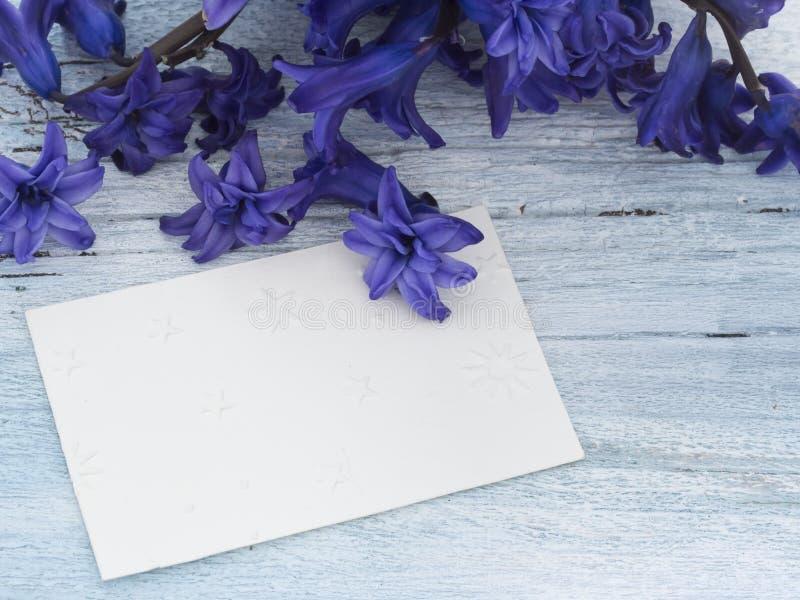Blank greeting card royalty free stock photos