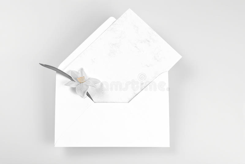 Blank Greeting Card And Envelope Decorated With Narcissus Flower