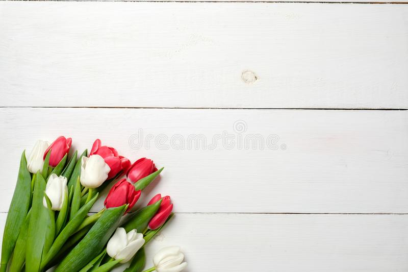 Blank greeting card with tulips flowers on white wooden table. Romantic wedding card, greeting card for womans or mothers day, bir stock image