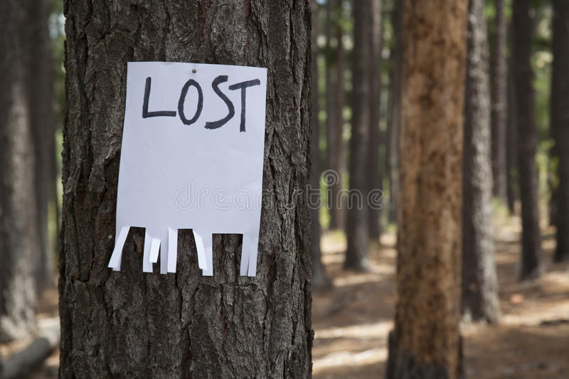 A blank lost sign royalty free stock photo