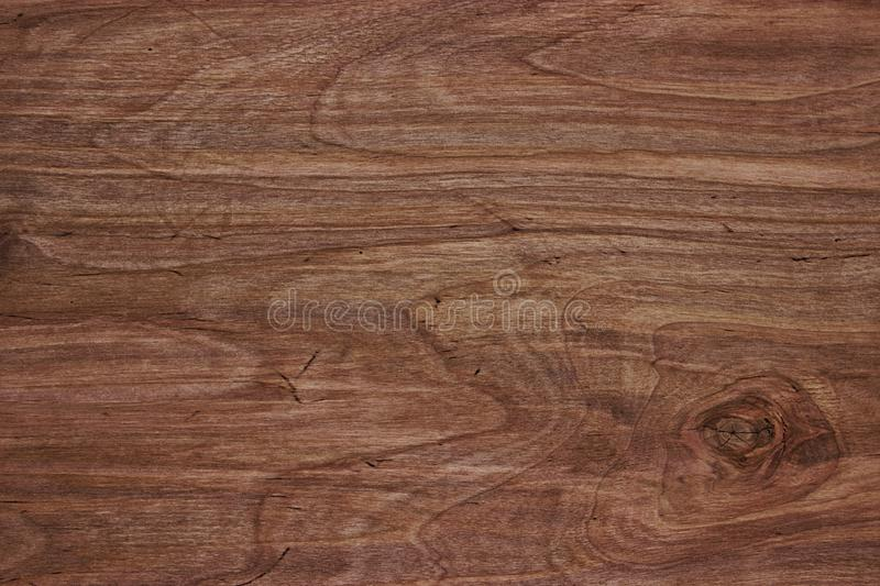 Blank natural wooden wall background or texture. Wood texture, natural dark brown vintage wooden background royalty free stock images