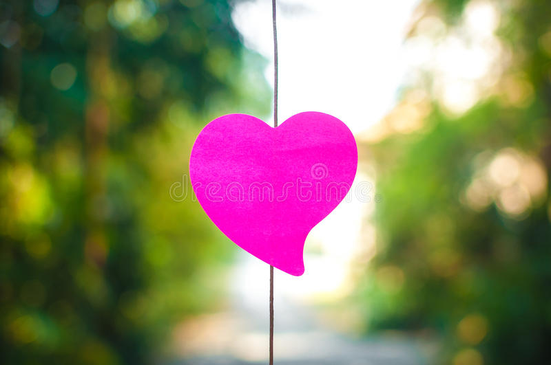 Blank note pad or sticky notes pink with bokeh sunlight outdoor stock images