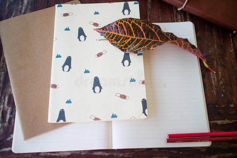 Blank notebooks royalty free stock photos