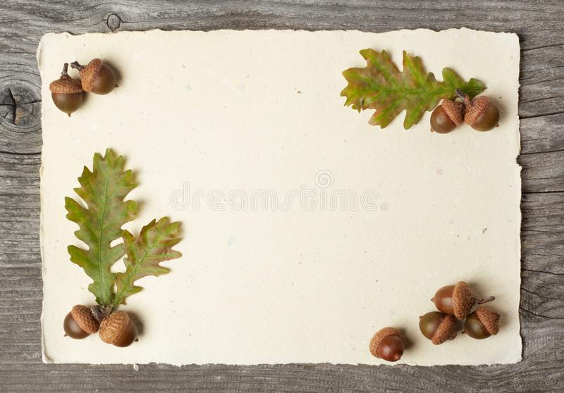 Blank paper and acorns on wood stock photos