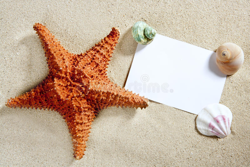 Blank paper beach sand starfish shells summer royalty free stock photography