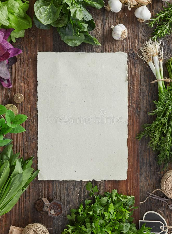Blank paper and herbs royalty free stock images