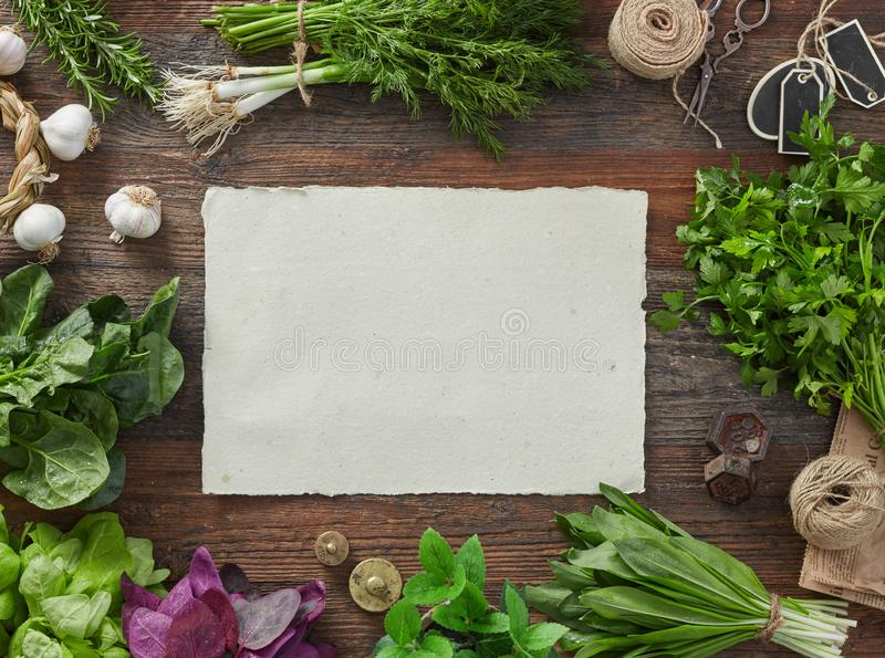 Blank paper and herbs royalty free stock photography