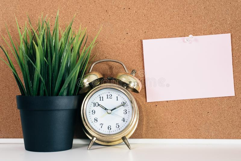 Blank paper note on cork board with golden alarm clock and green plant in pot royalty free stock image