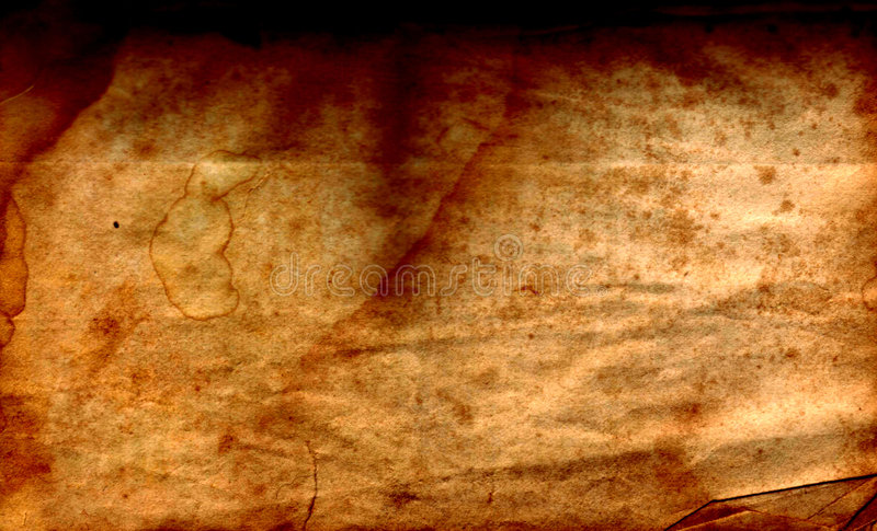 blank parchment royaltyfri foto