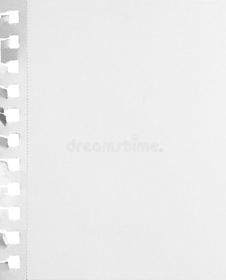 Blank perforated notebook paper sheet with ripped holes and shadow isolated on white background. Stock image royalty free stock photos