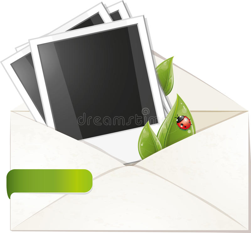 Download Blank Photo Frame With Green Leaves In Envelope Stock Vector - Image: 19298087
