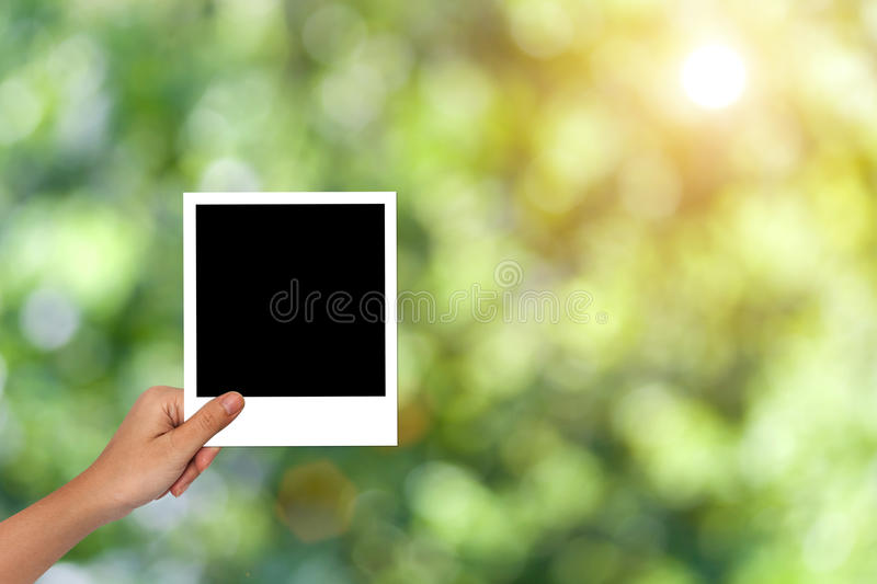 Blank photo frame for nature concept mockup stock image