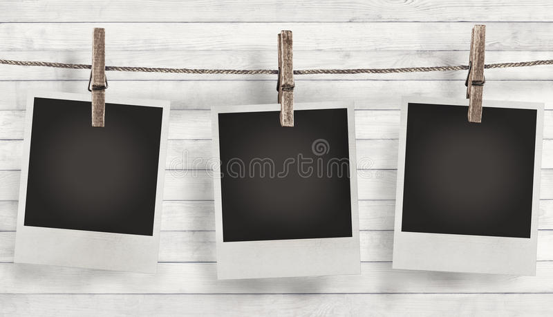 Blank photo frame with summer flowers stock photo