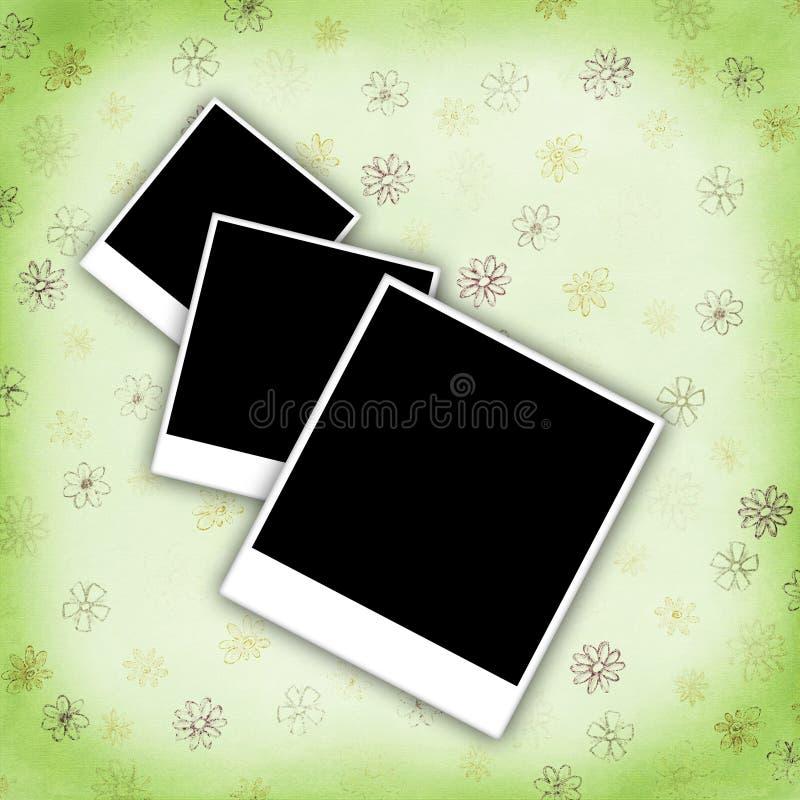 Blank photo frames vector illustration