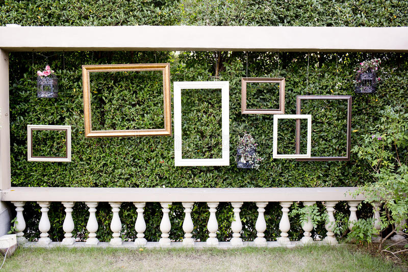 Blank photo frames against green small tree wall and white fence stock images