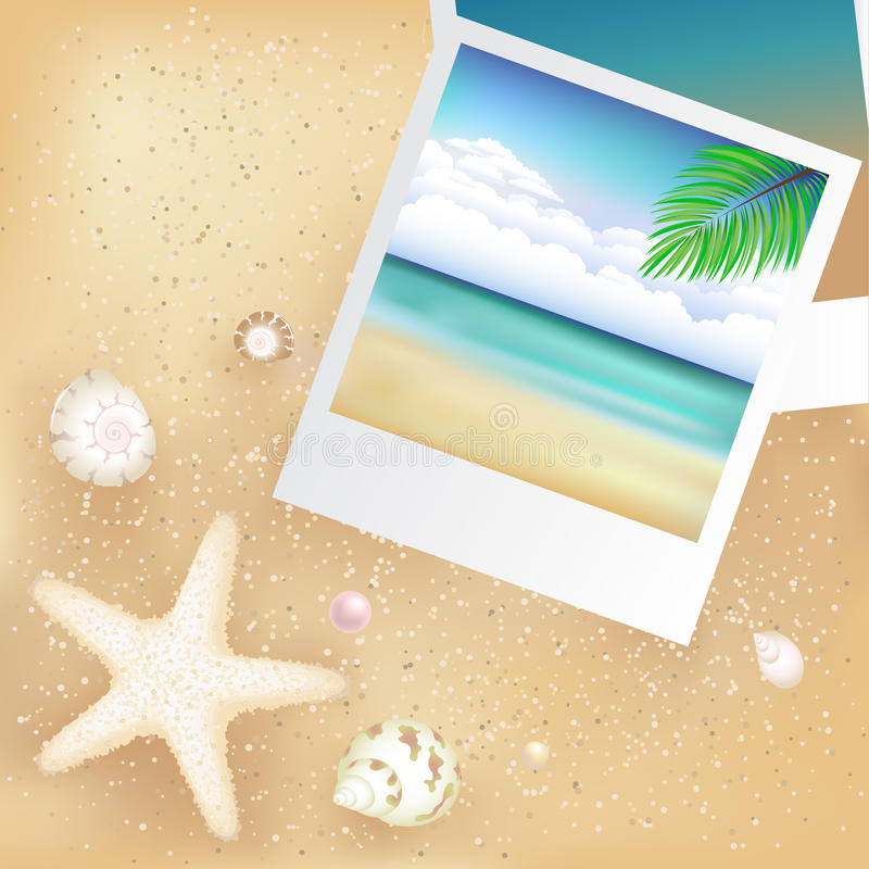 Free Blank Photos With Starfish. Vector Stock Photo - 16935600