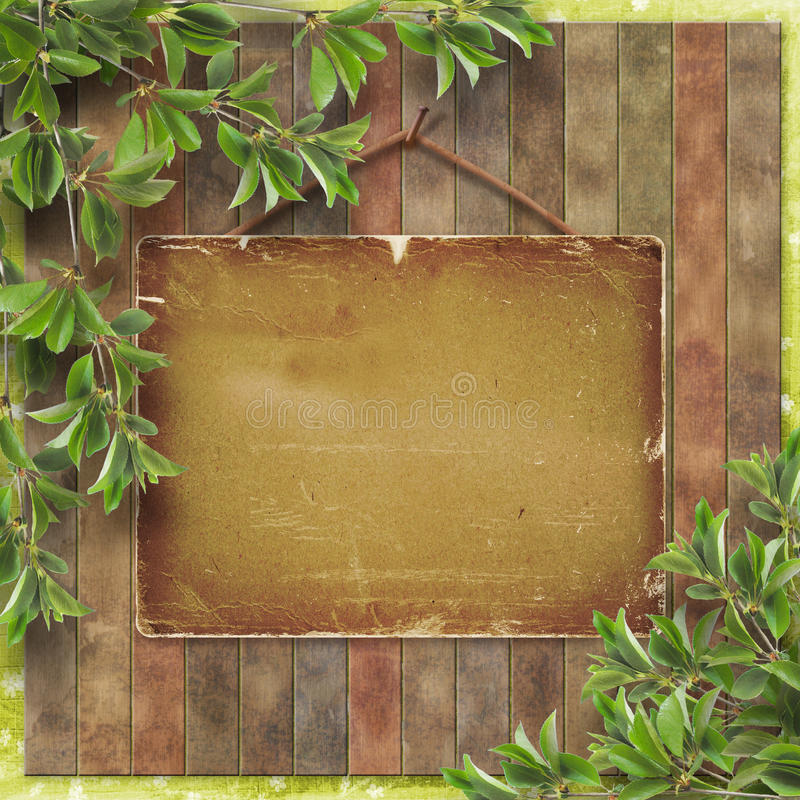 A Blank Piece Of Wood Hanging Royalty Free Stock Images