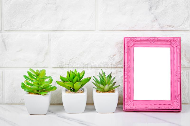 Blank pink vintage photo frame with cactus on marble background stock image