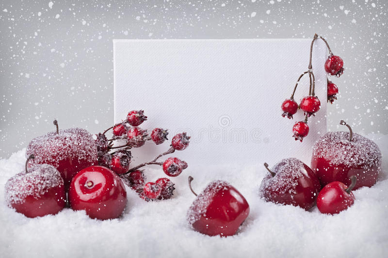 Blank sign with red christmas decorations. And snow stock photo