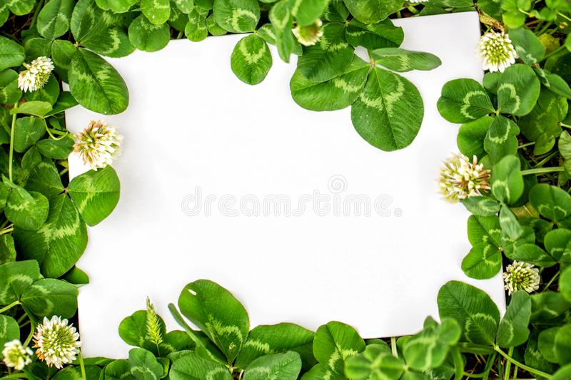 Blank sign with shamrocks decorations. stock photos
