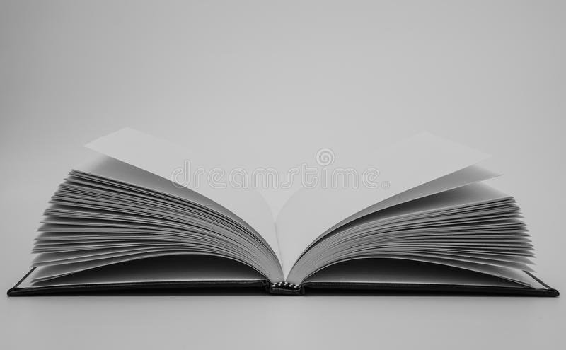 Blank square cover book template on white background stock image