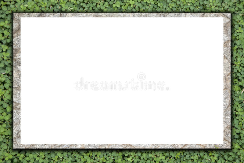 Blank stone billboard on green grass texture ,for background. royalty free stock image