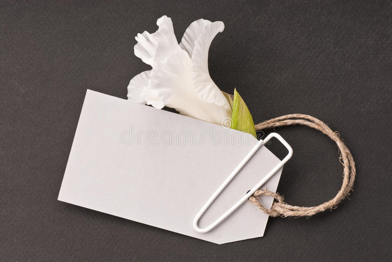 Blank tag with flower. On a dark background stock image