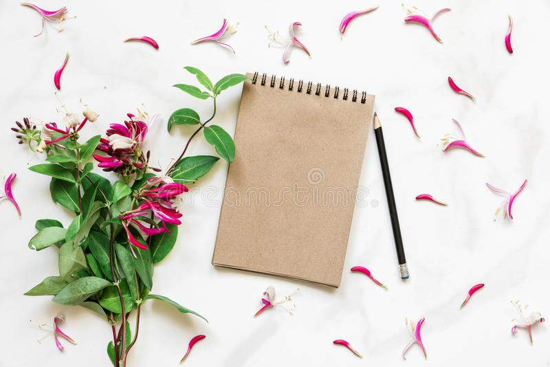 Blank vintage paper notebook in frame made of pink honeysuckle flowers over white marble table stock photos