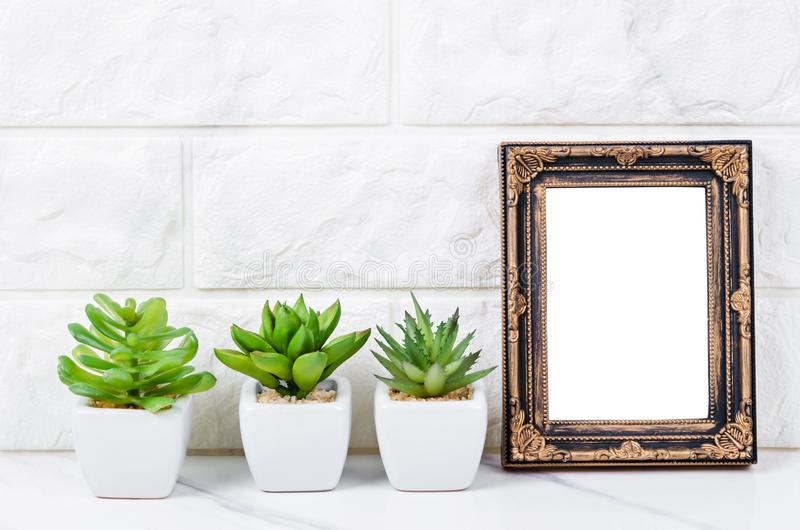 Blank vintage photo frame on wall with cactus plant stock photo