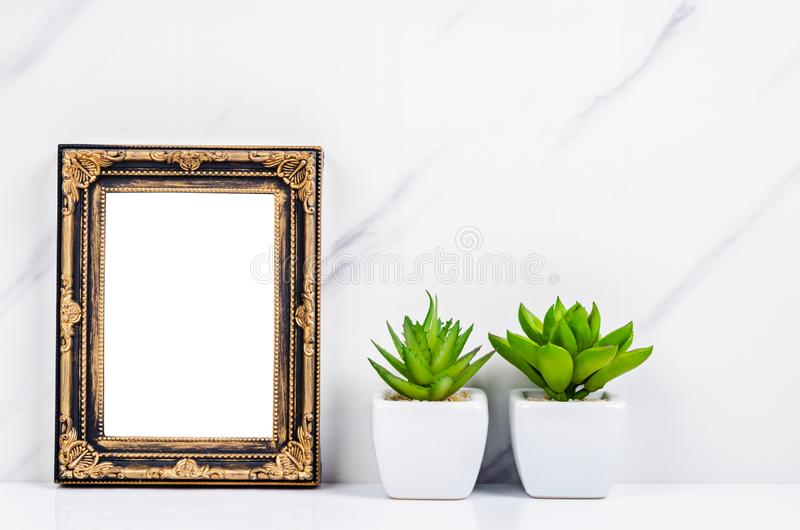 Blank vintage photo frame on wall with cactus plant stock images
