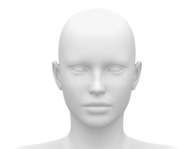 Blank White Female Head - Front view. Human royalty free illustration