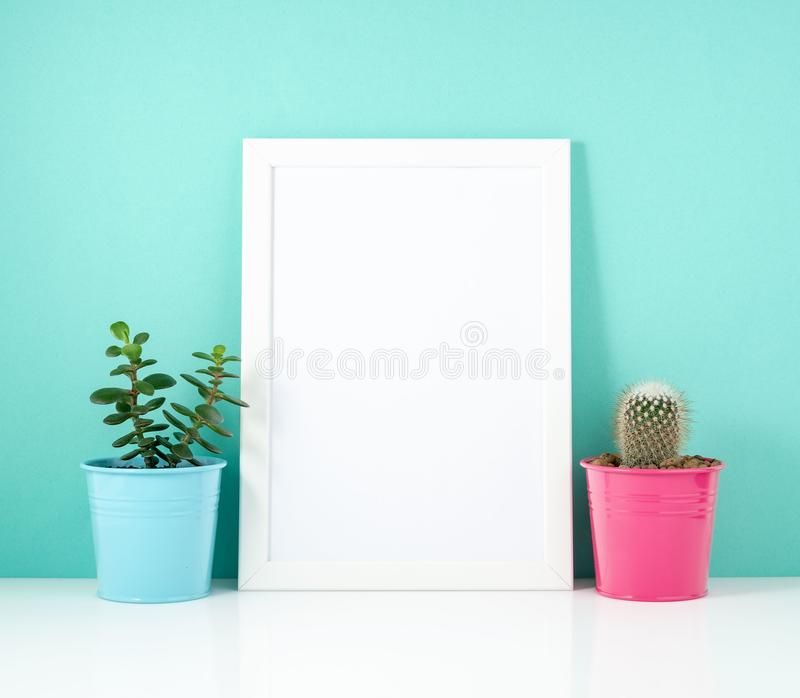Blank white frame, plant cactus on white table against the blue wall. Mockup with copy space. Blank white frame, plant cactus on a white table against the blue royalty free stock photo