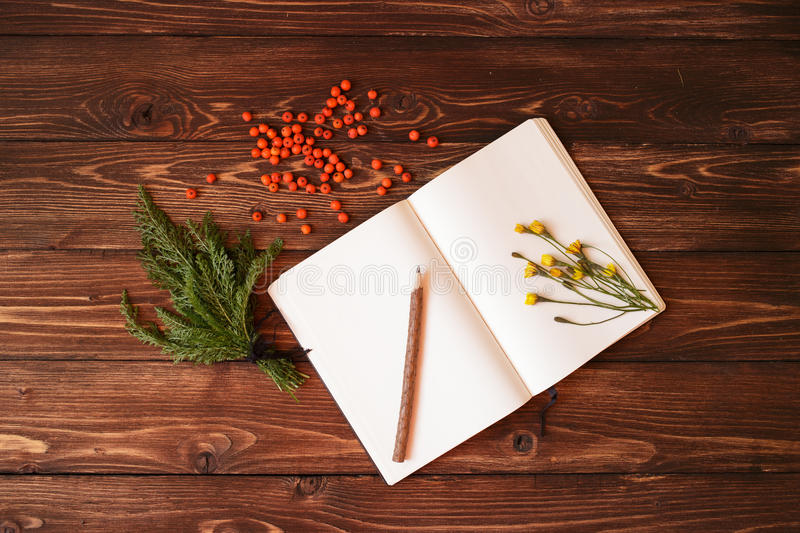 Blank white notebook, wooden pencil and ashberry on wooden background. Blank open white notebook, wooden pencil and ashberry on wooden background stock photo