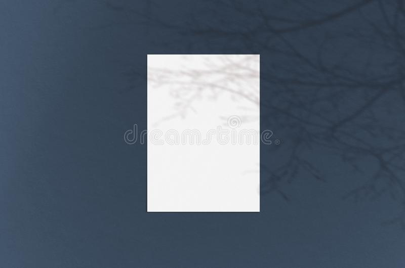 Blank white vertical paper sheet 5x7 inches with shadow overlay. Modern and stylish greeting card or wedding invitation mock up stock photography