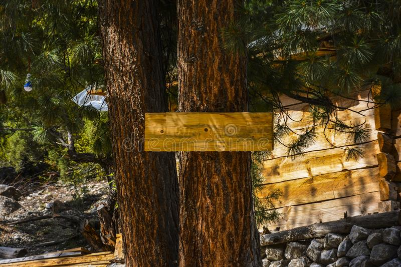 Blank wooden sign or signboard on a tree. Wooden sign or signboard on a tree. This picture was taken when I came across a beautiful brown wooden sign board royalty free stock images