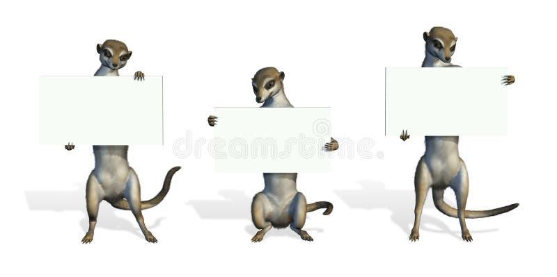 blanka holdingmeerkats undertecknar tre