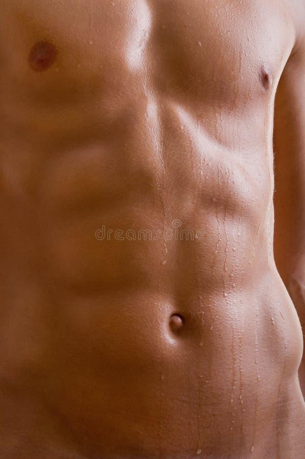 Blanke männliche Karosserie des Bauches lizenzfreie stockfotografie