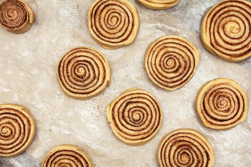 Blanks of cinnamon rolls dough are on greased parchment paper.  stock photos