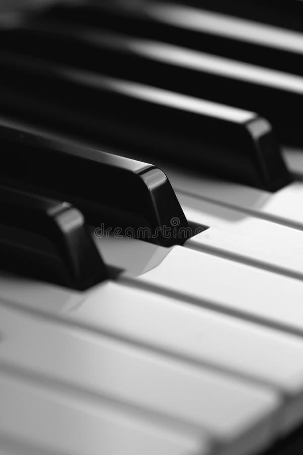 blankt key piano royaltyfri bild