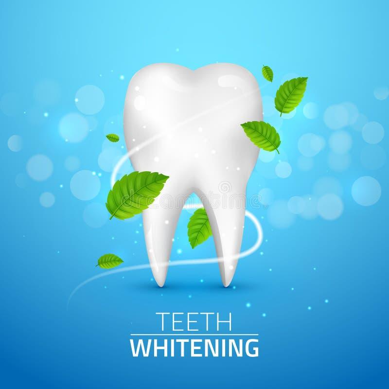 Blanqueando anuncios del diente, con las hojas de menta en fondo azul Las hojas de menta verdes limpian concepto fresco Salud de  ilustración del vector