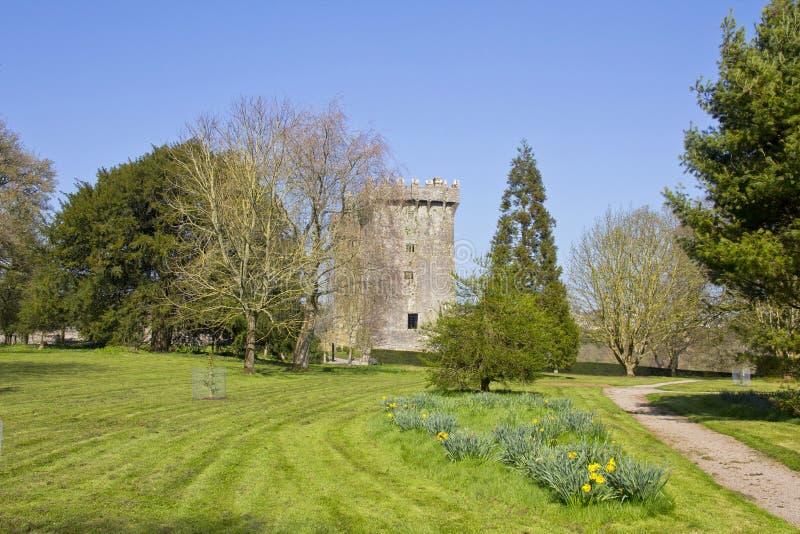 Download Blarney Castle stock photo. Image of fantasy, green, culture - 24099704