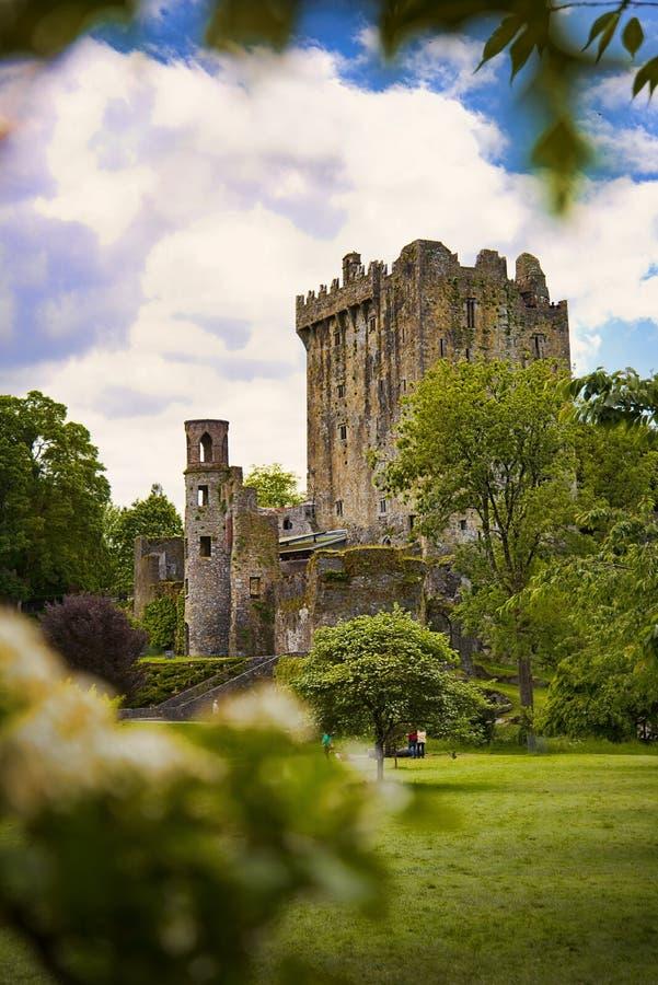 Free Blarney Castle Ireland Royalty Free Stock Photography - 55647537