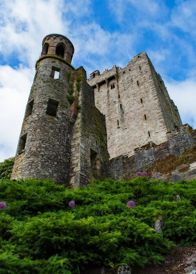 Blarney Castle Tower Hilltop royalty free stock images